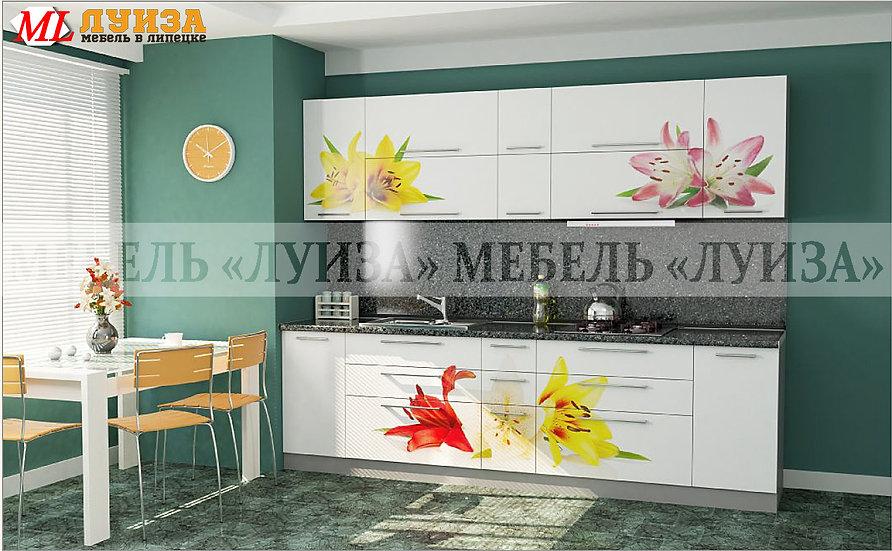 Кухонный гарнитур Ф-53 (2,7 м)