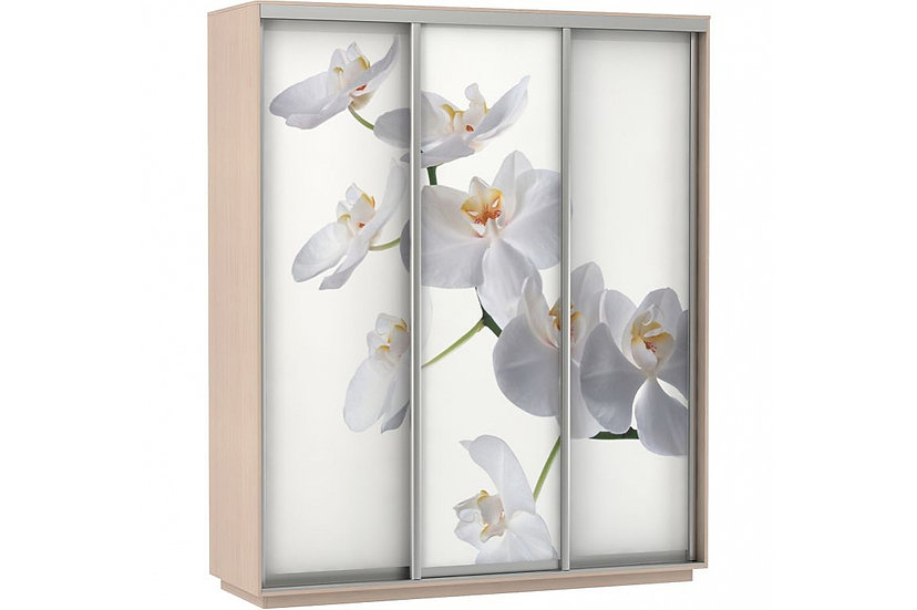 Шкаф-купе 1,8м; 2,1м; 2,4м (Орхидеи Фото трио)