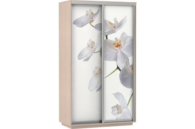 Шкаф-купе 1,2м; 1,4м; 1,6м Орхидея
