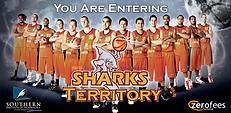 Sharks 2010