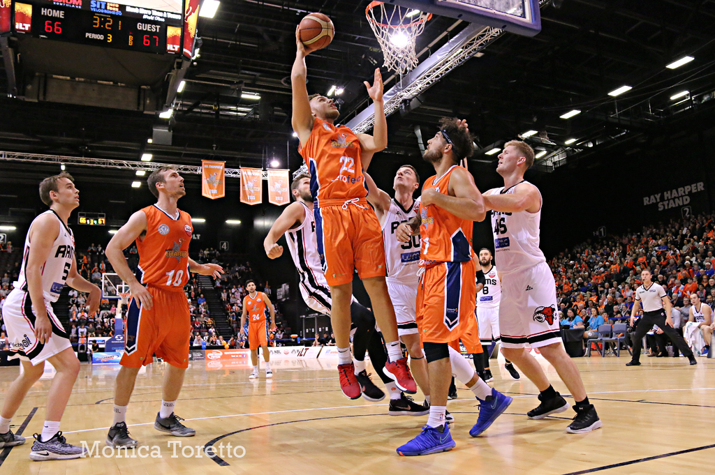 Southland-Sharks-_4292