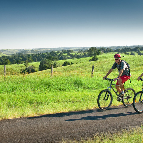 Breathe In Spectacular Hinterland Scenery With A Cycling Tour - Bring Your Bike!