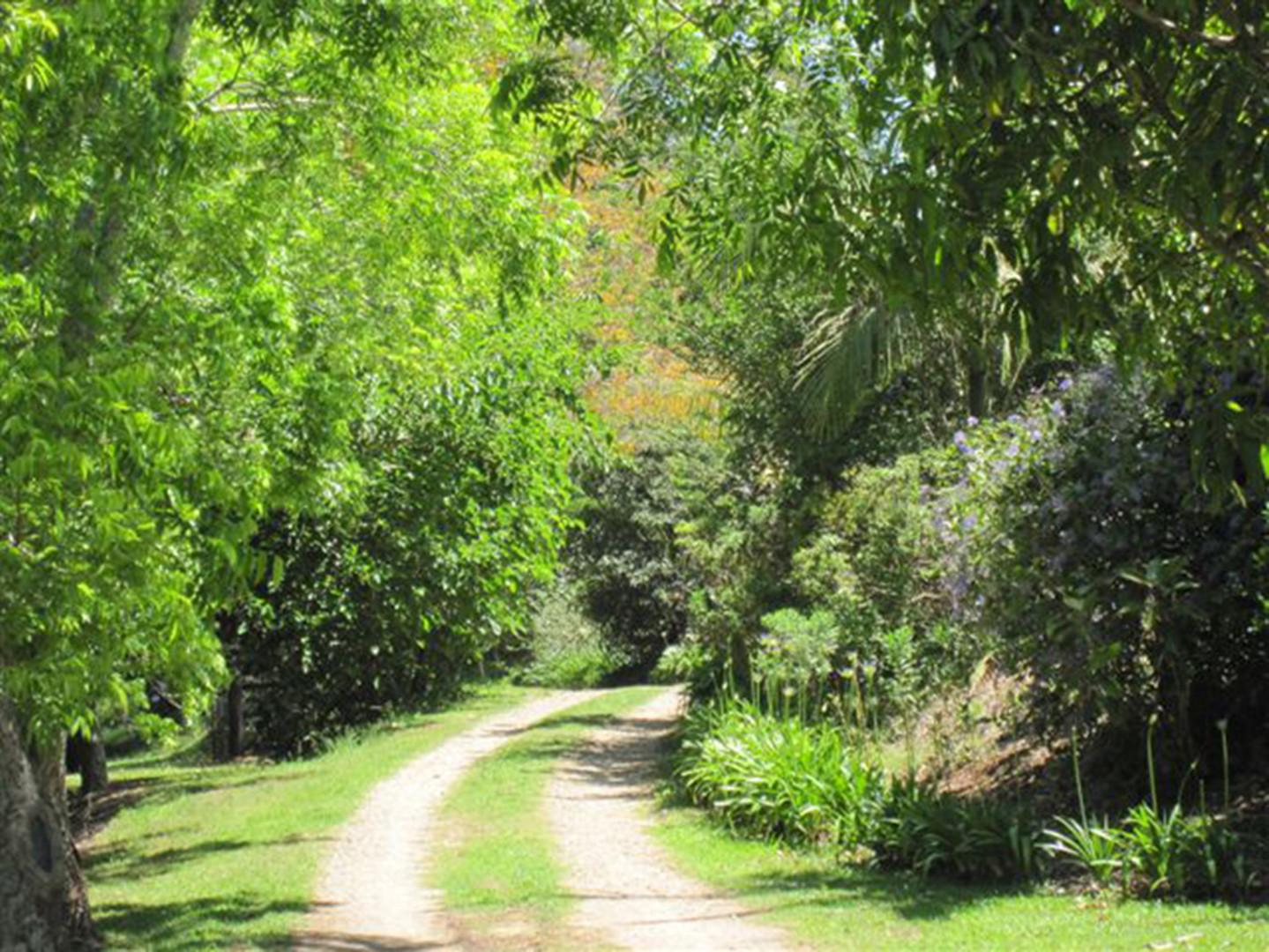 Byron Bay Short Term Stays   SummerHills Retreat   Byron Bay Accommodation