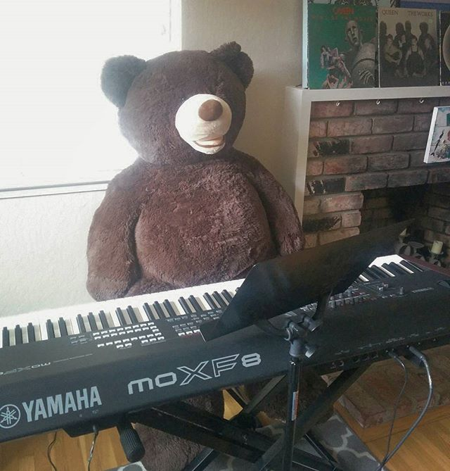 My newest student, Beary F.N.jpg