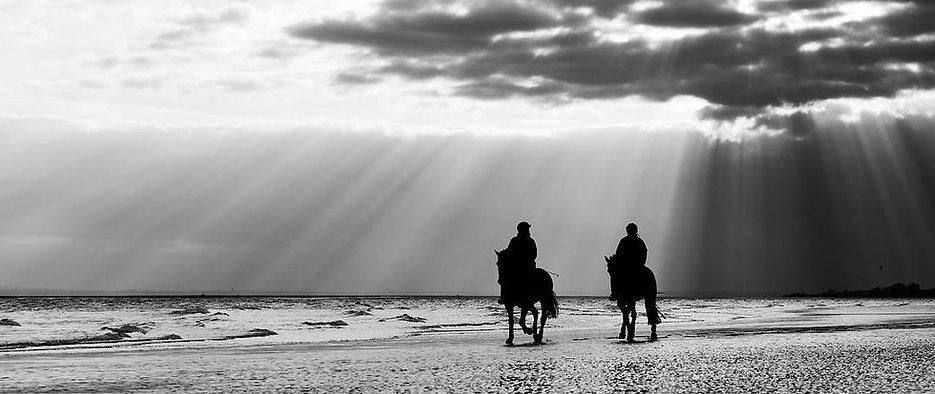 horses riding on beach