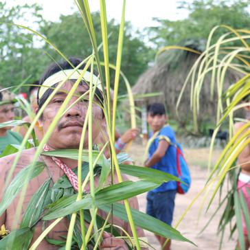 Gallery 6: Huni Kuin - Vegetable Festival