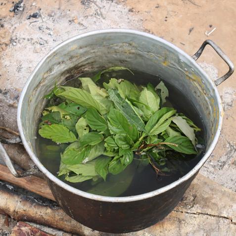 Gallery 12: Herbal Bath