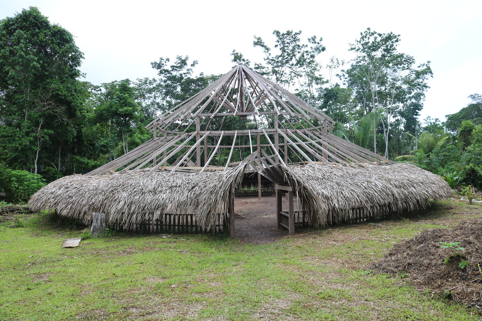 The roof of this maloca was destroyed by a fire. During my stay the villagers were busy building a new roof for it.