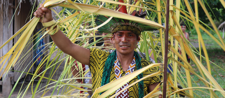 """Festival de Legumes"" (""Gemüsefestival"")"