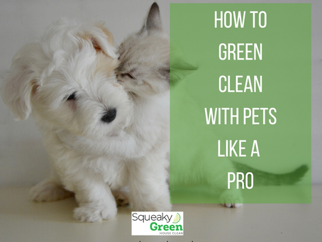 How to Green Clean With Pets Like A Pro