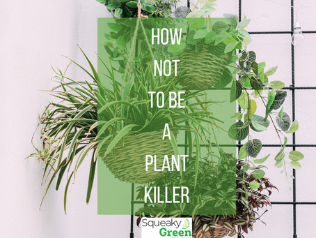 How Not to Be a Plant Killer
