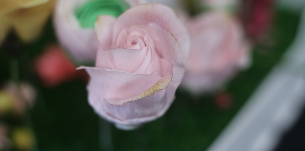 Pink small rose