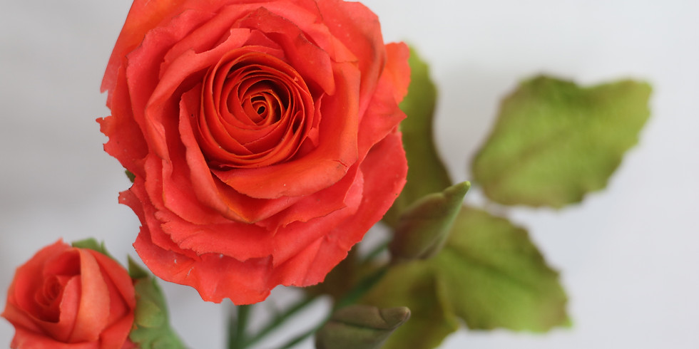 Sugar Rose Masterclass