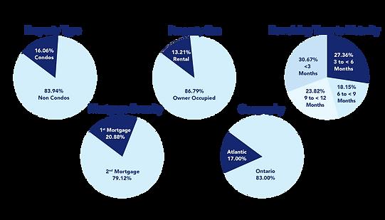 Existing Investors - Mortgage Summary.pn