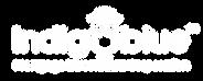 MIC-Logo-White.png