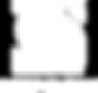 csg deepclean logo - white square.png