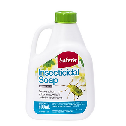 Safer's Insecticidal Soap - Concentrate