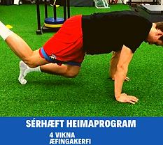 Copy of Heimaprogram-2.png