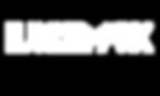 ldm logo White.png