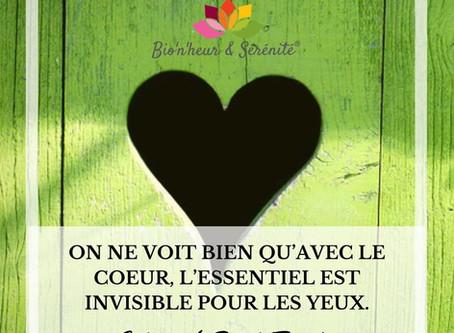 Quand tu n'arrives pas à te décider, écoute et suis ton cœur ! 💗