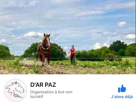 Association D'AR PAZ 🌞🌸🌿