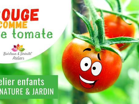 Atelier Éveil nature & jardin - Rouge comme une tomate 🍅💚