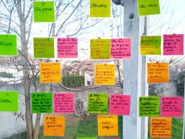 participatif cresna school