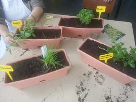 jardin cresna school