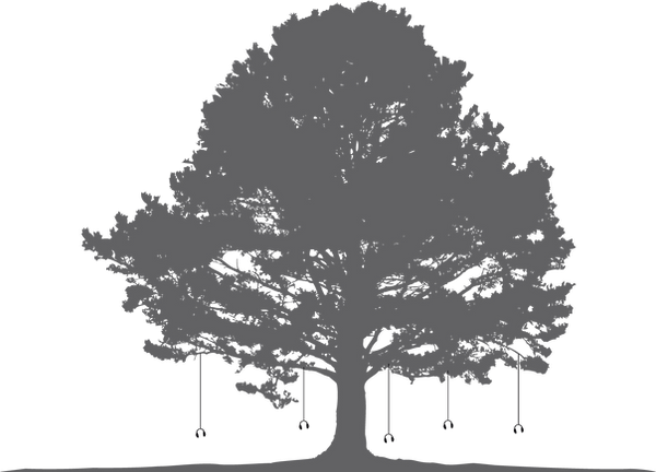 Tree Listening Project - Grey.png