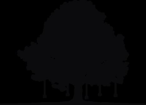Tree Listening Project