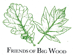 Friends Of Big Wood
