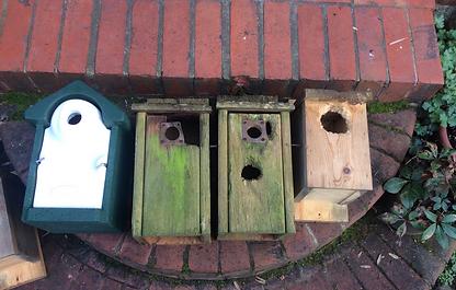birdboxes-bigwood.png