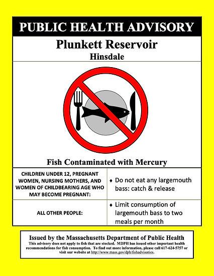 Plunkett Reservoir (2021) Poster.jpg
