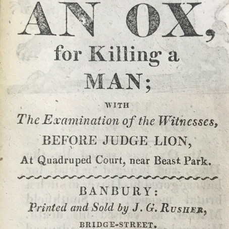 Newberry Library find: The Trial of an Ox