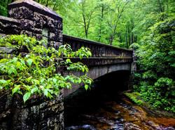 Appalachian 2017