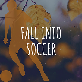 Fall into SOCCER.png