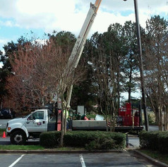 Our boom truck setting a pole
