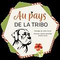 Logo Au pays de la Tribo.png