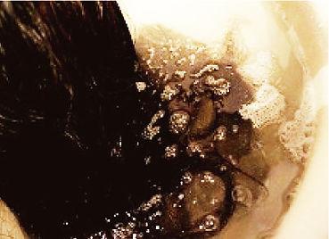 炭酸12.jpg