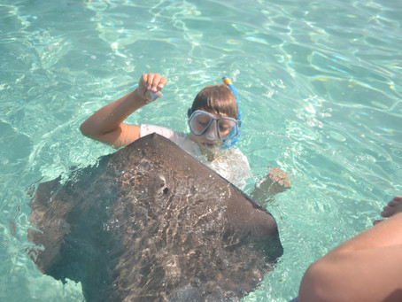Swimming with Rays