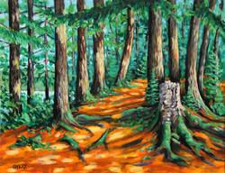 Trail Side