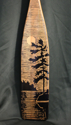 White Pine in the Moonlight