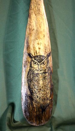 Night Owl SOLD