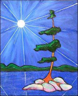 Moonlight Pine