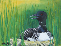 The Loon on the Nest 9 x 12