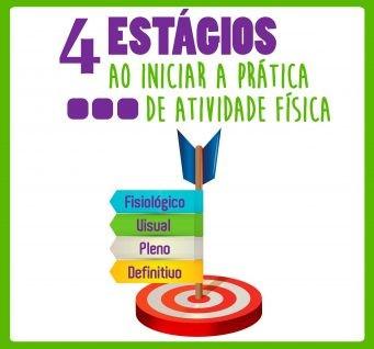 4 estagios