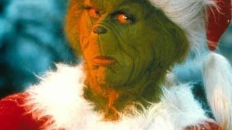 Grinch Christmas Door Appearance for 2 Children