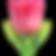 tulip_1f337.png