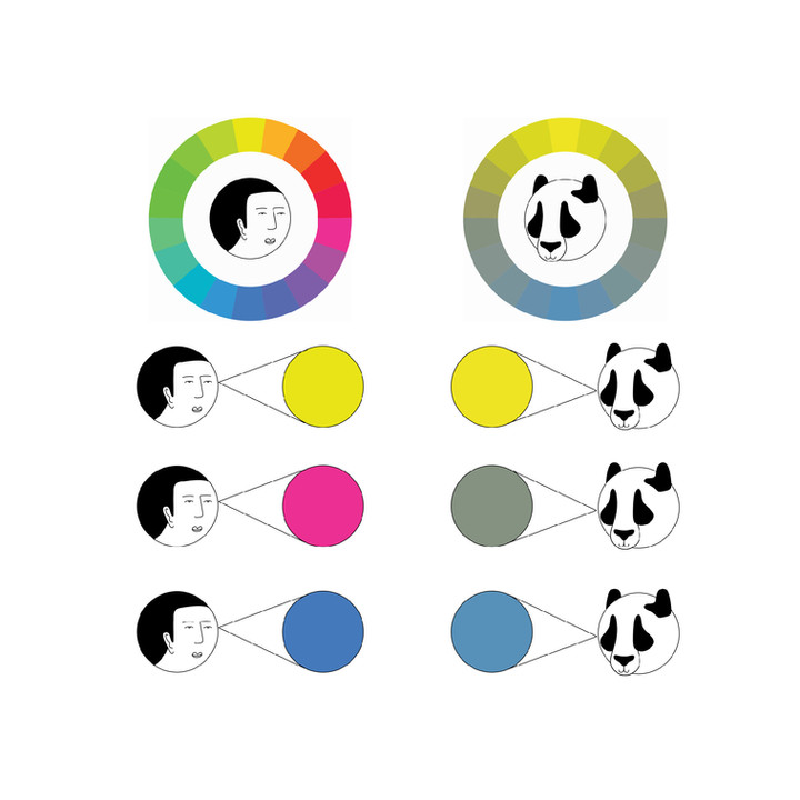 HUMAN-VS-PANDA-VISION-2-43.jpg