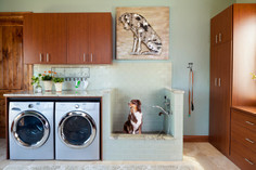 Increasing Popularity of Residential Dog Wash Stations